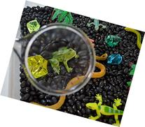 Rainforest Discovery Kit for Sensory Play