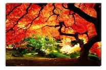Startonight Wall Art Canvas Red Maple Nature, Trees USA