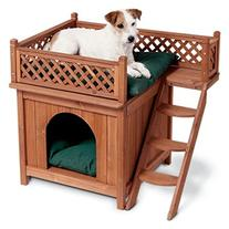 Outdoor Room with Beautiful Lattice Fence Comfortable Dog