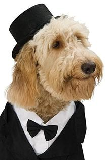 Rubies Costume Company Top Hat for Your Pet, Small/Medium