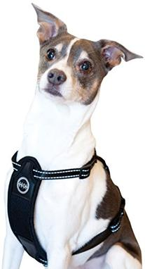 K&H Manufacturing Travel Safety Harness Small 12-Inch-18-