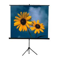 Mustang SC-T8411 80 x 80-Inch Tripod Projection Screen,