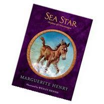 Sea Star Orphan of Chincoteague