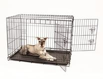 Carlson Secure and Compact Double Door Metal Dog Crate,