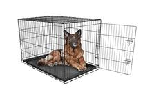 Carlson Pet Products SECURE AND FOLDABLE Single Door Metal