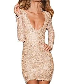Sexy Womens Nude Lace Scalloped Deep V Backless Bodycon