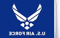 "Pro Pad Sleeved 10""x15"" Air Force Logo  Motorcycle Flag"