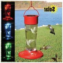 Songbird Essentials Solar Powered Hummingbird Feeder, 14 Oz