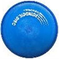Aerobie Squidgie Flying Disc - Blue