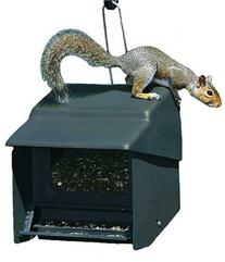 Homestead Super Stop-A-Squirrel Bird Feeder  - 3201S