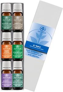 Essential Oil Variety Set Kit - 6 Pack - 100% Pure