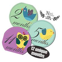Vintage Birds Baby Monthly Stickers - Shower Gift or