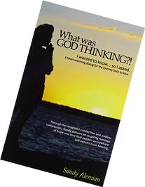 What Was God Thinking?!: I Wanted to Know...So I Asked. a