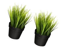 """Ikea Artificial Potted Plant Wheat Grass 9"""" Lifelike Nature"""