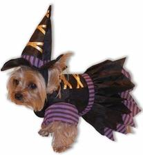 Forum Novelties 64042 Witch Pet  Costume, Small