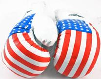 New 1 Pair of Youth USA 8oz Boxing Gloves For Kids